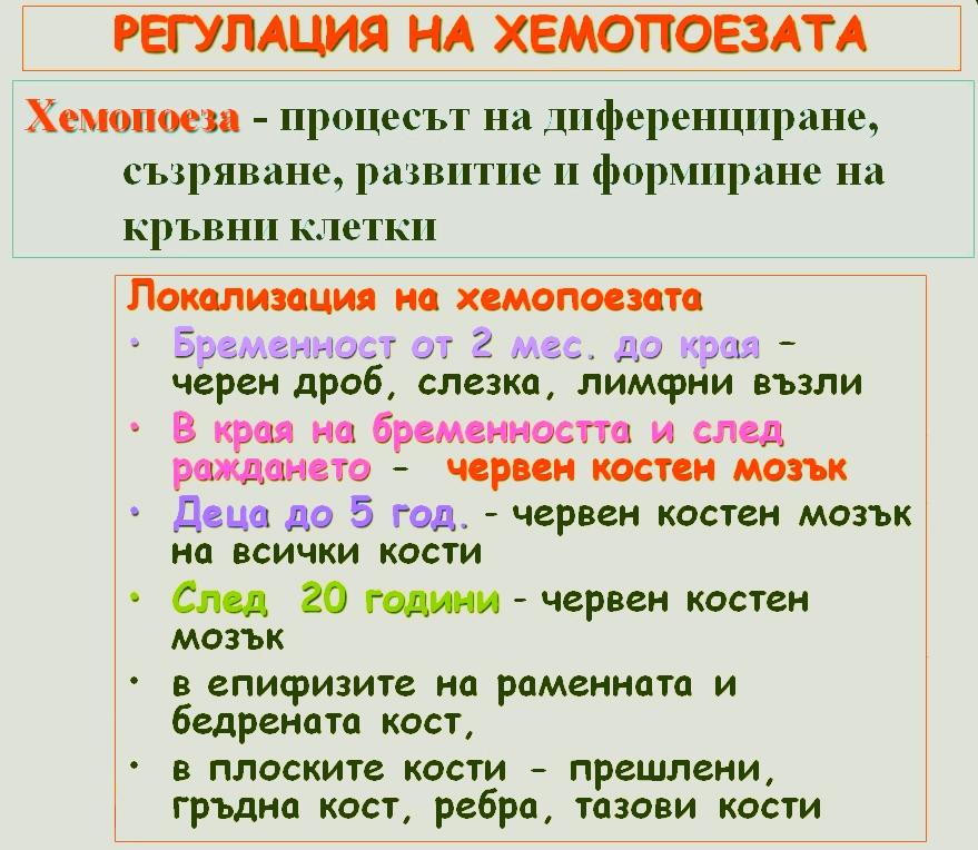 регулация на хемопоезата