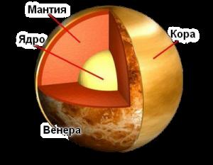 структура на венера