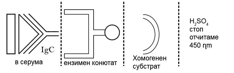 Имуноензимен метод ELIZA