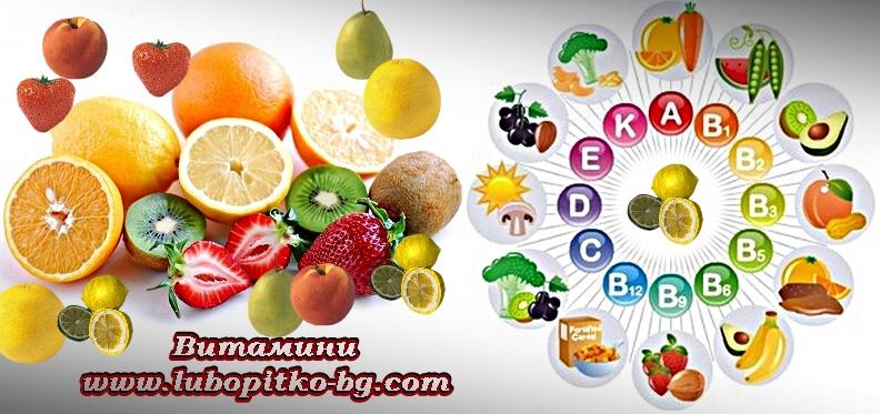 витамини и плодове