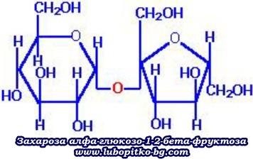 захароза
