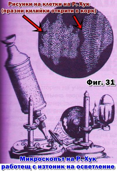 микроскоп на Хук